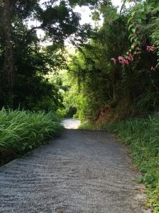 Driveway Tortola, BVI
